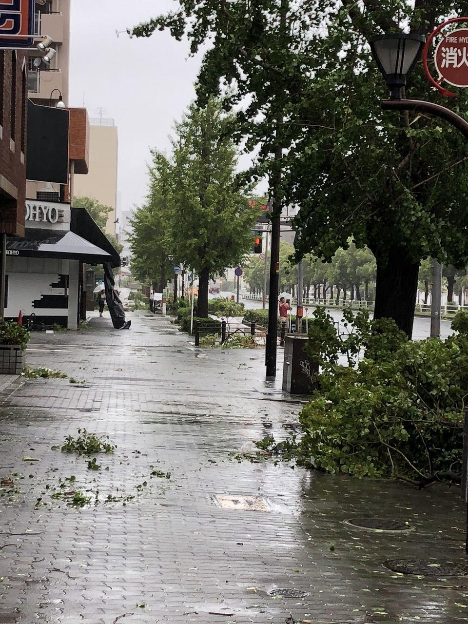 9月4日の台風被害について
